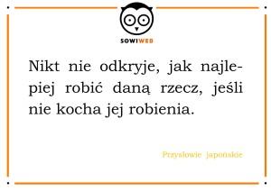 SowiWeb radzi